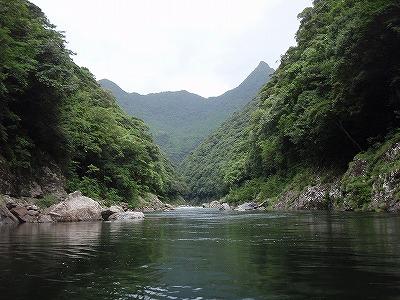 屋久島森林浴