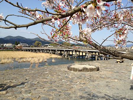 春の京都めぐり